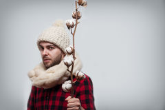 Man in a woolen scarf and hat is holding a cotton branch  on grey background with copy space Royalty Free Stock Photos