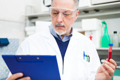 Man at work in a laboratory Stock Photo