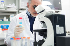 Man at work in a laboratory Royalty Free Stock Photography