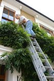 Man at work up a ladder Royalty Free Stock Photography