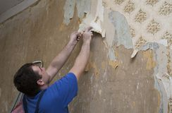 Man worker removing old wallpaper during renovation Stock Photography