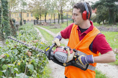 Man working bush trimmer Stock Image