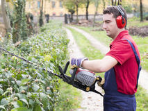 Man working bush trimmer Stock Images