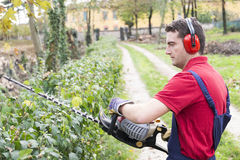 Man working bush trimmer Royalty Free Stock Image