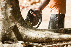 Man working with chainsaw Stock Photos