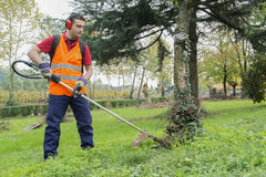 Man working edge trimmer Royalty Free Stock Photography