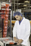 Man working at factory Royalty Free Stock Image