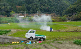 A man working on the field in Kyoto, Japan Stock Image