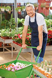 Man working in a garden center Royalty Free Stock Images