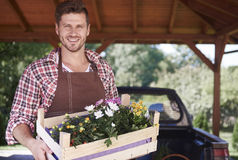Man working at garden. Man farmer is selling flower crates Stock Photography