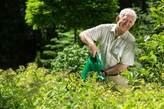 Man working in the garden Royalty Free Stock Photo