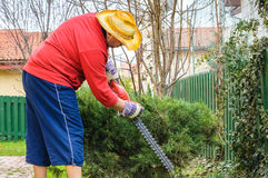 Man working in garden Royalty Free Stock Photo