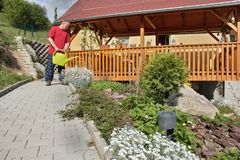 Man working in the garden, summer day Royalty Free Stock Photo