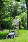 Man working in the garden Stock Photography