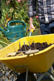 Man working in garden with wheelbarrow Stock Photography