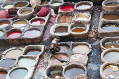 Man working hard in the tannery souk in Fez, Morocco Stock Photo