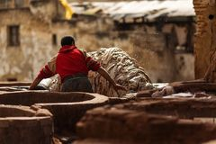 Man working hard on a tennery in Fez town of Morocco.  Stock Image