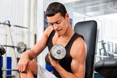 Man working his arms with dumbbells at gym Stock Photography