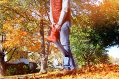 Man working with leaf blower: the leaves are being swirled up and down on a sunny day stock image