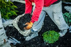Free Man Working On A Landscaping Project Royalty Free Stock Photos - 121747288