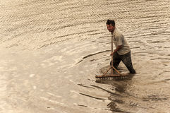 Man working rice paddies Stock Image