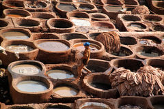 Man working in the Tanneries of Fes Stock Image