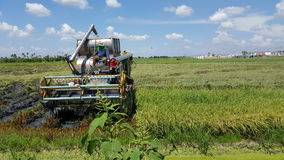 Man working on tractor for rice harvest Stock Image