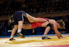 Man wrestlers. Royalty Free Stock Image
