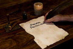 Man writes on a parchment animal protection Stock Image