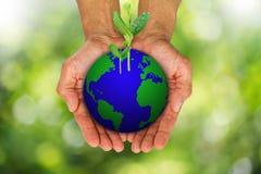 Man& x27 ; s remet tenir le globe de la terre avec les pousses vertes s'élevant sur le fond brouillé de bokeh Image stock