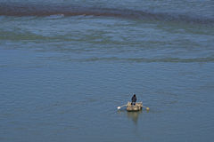 Man on Yak Skin Boat Crossing Yarlung Tsangpo River in Tibet Royalty Free Stock Photo