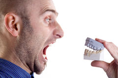 Man yelling at dental mould Stock Image