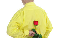 Man in a yellow shirt holding a red rose Stock Photos