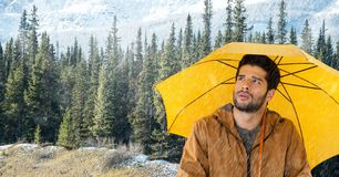Man with yellow umbrella in forest. Digital composite of Man with yellow umbrella in forest Royalty Free Stock Photo