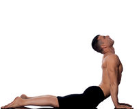 Man yoga cobra pose sun salutation surya namaskar Royalty Free Stock Photo