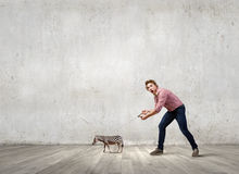 Man with zebra. Young man in casual holding small zebra on lead Royalty Free Stock Photography