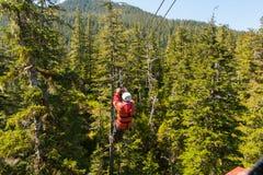 Man zip-lining across tree tops Stock Image