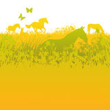 Manada de caballos en pasto verde libre illustration