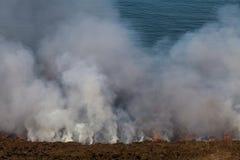 Heath Fire Stock Photos