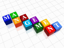 Management in colour 2. 3d colour boxes with text - management, word Stock Photo