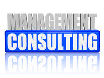 Management consulting in 3d letters and block Stock Photo