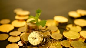 Time for Success of Finance Business. Investment, business financial ideas concept. Management efficiency, time is money. Management efficiency, time is money stock footage