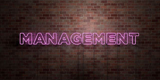 MANAGEMENT - fluorescent Neon tube Sign on brickwork - Front view - 3D rendered royalty free stock picture Stock Photos