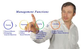Management functions. Presenting diagram of  management functions Stock Images