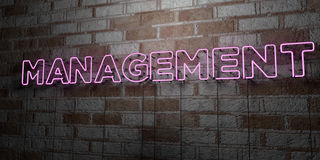 MANAGEMENT - Glowing Neon Sign on stonework wall - 3D rendered royalty free stock illustration Royalty Free Stock Images