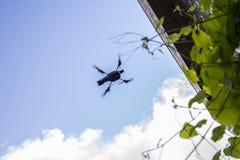 Management multicopter unbemannter Flug im Garten Stockbild