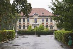 Management University Stock Images