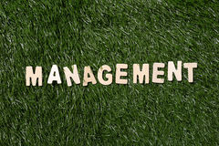 Management Wooden Sign On Grass Royalty Free Stock Photos