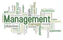 Management-Wort-Wolke Lizenzfreie Stockfotografie