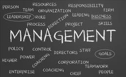 Managementwortwolke Lizenzfreie Stockbilder